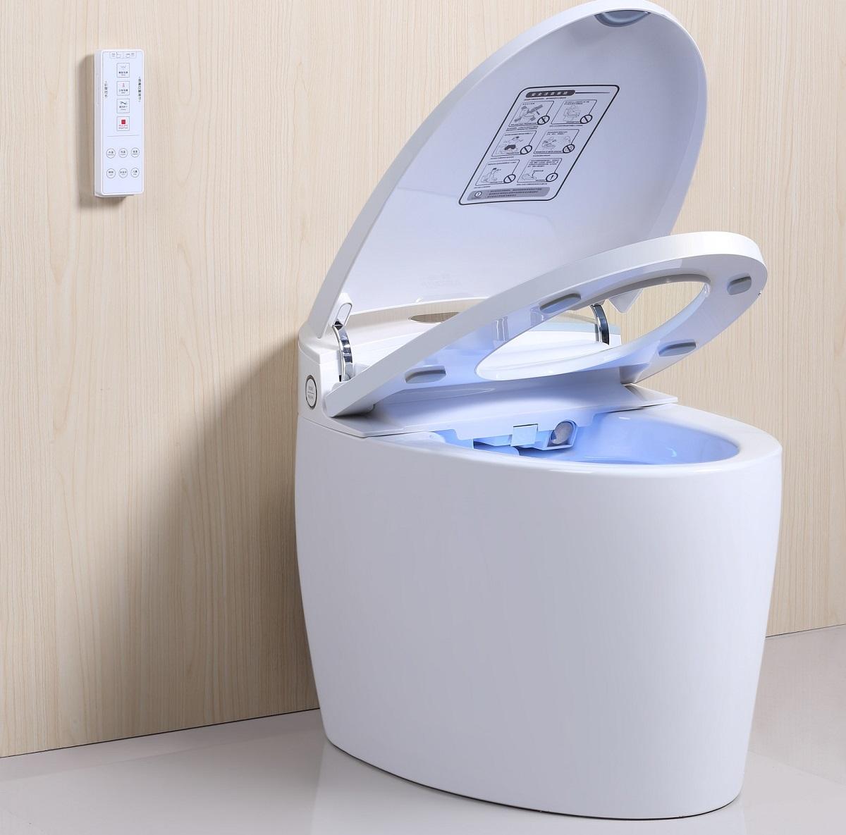 meilleur wc japonais